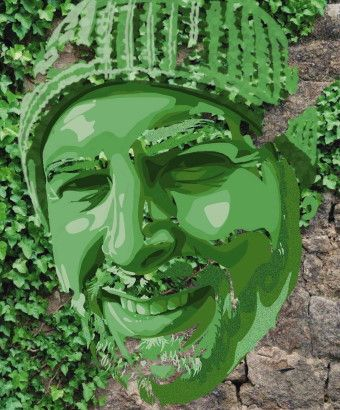 Picture of my face stylistically rendered in green atop ivy crawling a stone wall